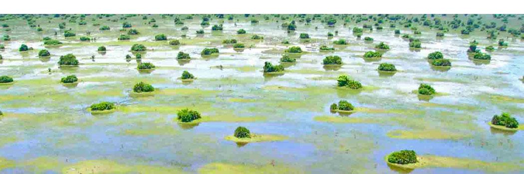Lake Bangweulu Wetlands Amp Swamps