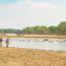 Take A Walk On The Wild Side Of North Luangwa