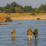 17 Days and 365 kms: Walk Luangwa 2020